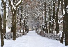Vicolo nell'inverno in neve Fotografie Stock Libere da Diritti