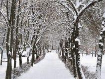 Vicolo nella neve nell'inverno Immagini Stock Libere da Diritti