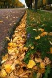 Vicolo nella sosta di autunno Immagine Stock Libera da Diritti