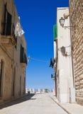 Vicolo in Oldtown di Giovinazzo. Apulia. Fotografia Stock Libera da Diritti