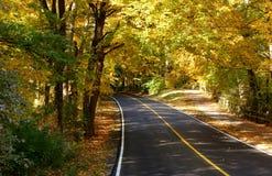 Vicolo pacifico di autunno immagine stock libera da diritti