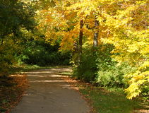Vicolo pacifico di autunno fotografia stock