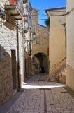 Vicolo. Pietramontecorvino. La Puglia. L'Italia. Fotografia Stock