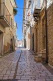 Vicolo. Pietramontecorvino. La Puglia. L'Italia. Fotografia Stock Libera da Diritti