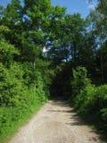 Vicolo protetto del paese Fotografie Stock