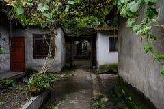 Vicolo protetto sotto i tralicci dell'uva fra la casa cinese antica Immagini Stock Libere da Diritti