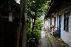 Vicolo stretto verdeggiante fra le case dilapidate Fotografie Stock