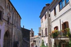Vicolo. Tarquinia. Il Lazio. L'Italia. Immagine Stock