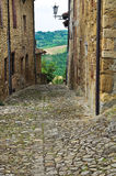 Vicolo. Vigoleno. L'Emilia Romagna. L'Italia. Fotografia Stock