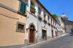 Vicolo. Viterbo. Il Lazio. L'Italia. Immagini Stock Libere da Diritti