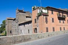 Vicolo. Viterbo. Il Lazio. L'Italia. Fotografia Stock Libera da Diritti