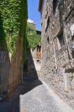 Vicolo. Viterbo. Il Lazio. L'Italia. Fotografie Stock Libere da Diritti