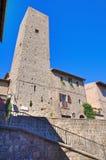 Vicolo. Viterbo. Il Lazio. L'Italia. Immagine Stock Libera da Diritti