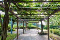 Vicolo vuoto in giardino con la copertura delle foglie sul tetto Immagini Stock
