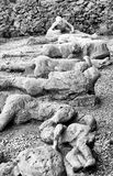 Victim in Pompeii of the eruption of Mt Vesuvius Royalty Free Stock Photos