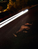 Victim of road accident Royalty Free Stock Images