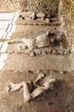 Victimes de Pompeii Photo libre de droits