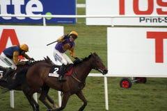 victoires rouges de walsh d'Inca courageux Images stock