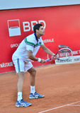 Victor Hanescu - BRD Nastase Tiriac Trophy Royalty Free Stock Photos