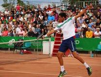 Victor Hanescu in der Aktion Lizenzfreies Stockfoto