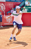 Victor Hanescu Royalty Free Stock Image