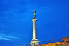 Victor monument at night Royalty Free Stock Photo