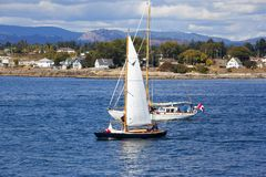 Vintage boats are docked at the  Victoria Classic Boat Festival. Royalty Free Stock Photography