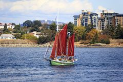Vintage boats are docked at the  Victoria Classic Boat Festival. Royalty Free Stock Image