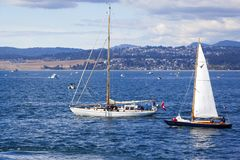 Vintage boats are docked at the  Victoria Classic Boat Festival. Stock Photos