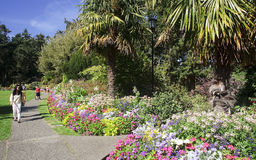 VICTORIA, CANADA - AUGUST 27, 2016: Beacon Hill Park on 27 Augus Royalty Free Stock Image