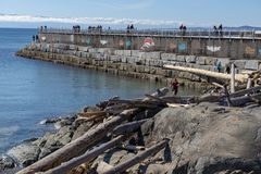 VICTORIA, CANADA - MARCH 9, 2018: View of Ogden Point Breakwater, a popular walk near Canada`s busiest deep water port facility,. Taken in Victoria, British stock image