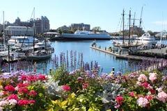 Victoria City Inner Harbor i sommartid Arkivbilder