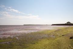 Victoria durch Meer auf Prinzen Edward Island in Kanada stockbild