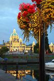 Victoria Dusk and Flowers, British Columbia Stock Photo