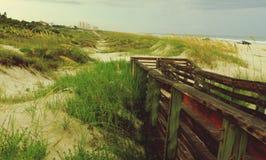 Victoria fácil de la duna Imagen de archivo