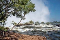Victoria Falls перед Стоковая Фотография RF