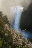 Victoria Falls Imagen de archivo libre de regalías