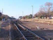 Victoria Falls Station Lizenzfreie Stockfotos