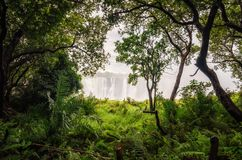Free Victoria Falls View Stock Images - 158951574