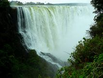 Victoria falls, zambezi river, zimbabwe Royalty Free Stock Photo