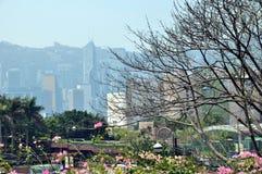 Victoria Harbour della molla di Œin del ¼ del centerï di Œfinancial del ¼ del ï di Hong Kong Immagini Stock Libere da Diritti