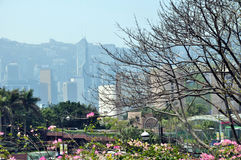 The Victoria Harbour of Hongkong ,financial center,Sheraton Hotel in Hongkong,financial center ,China,Asia Royalty Free Stock Images
