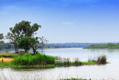 Victoria Nile Royalty Free Stock Images