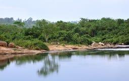 Victoria Nile scenery in Uganda. Waterside scenery showing the Victoria Nile in Uganda (Africa Royalty Free Stock Photo