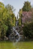 Victoria Park-Wasserfall Stockbilder