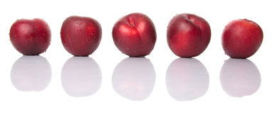 Victoria Plum Or Red Plum I Stock Photography