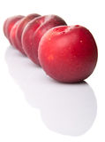 Victoria Plum Or Red Plum IV Stock Photos