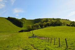 Victoria's Jubilee V South Downs. Stock Photography