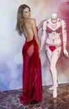 Victoria's Secret Dream Angels Fantasy Bra Stock Photography