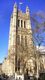 Victoria Tower Royaltyfri Bild